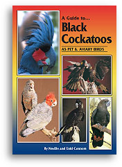 Black Cockatoos by Neville & Enid Connors