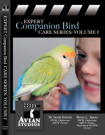 Avian Studios Expert Companion Bird Series Vol. 1